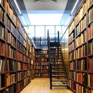 Библиотеки Дровяной
