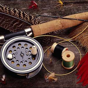Охотничьи и рыболовные магазины Дровяной